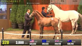 馬名:サトノゴールド。5000万円。父ゴールドシップ。マイジェンの2017。セレクトセール2017