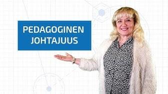 OPS-webinaari: Pedagoginen johtajuus, Hanna Sarakorpi