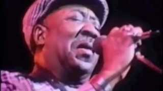 Muddy Waters : Mannish Boy Live ; Amazing Version from Eric Claptons film Rolling hotel :Manish Boy