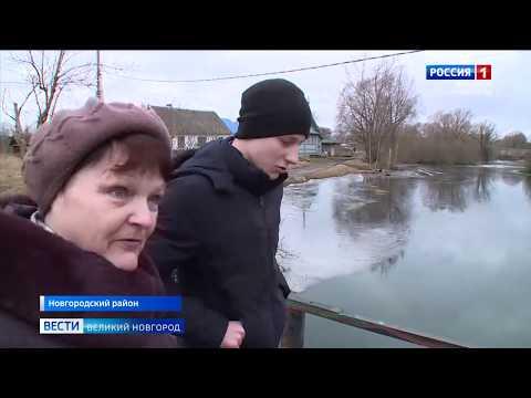 ГТРК СЛАВИЯ Дима Яковлев из Пролетария 19 02 20