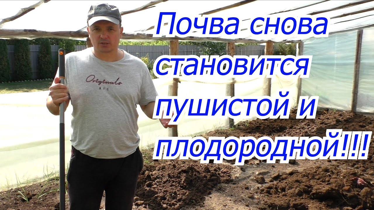 ТРИ отличных способа сделать почву пушистой и плодородной!