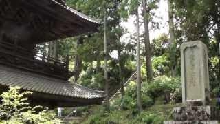 2012/6/25 小室山・妙法寺のあじさい祭りの模様です。
