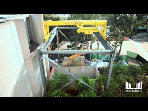 Salk Institute - Infrastructure Renewal Project