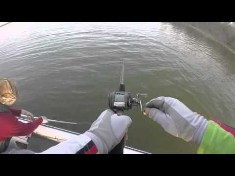 Pescando con señuelo JitterBug Presa los Mimbres Febrero 2016