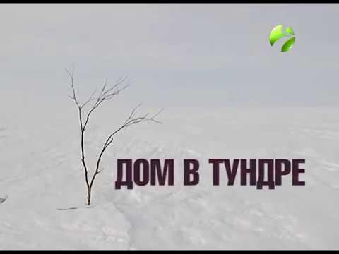 Арктика.Live: 'Дом в тундре'