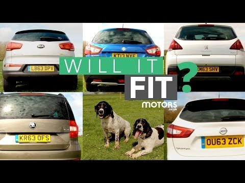 Dog Friendliness: Nissan Qashqai vs Kia Sportage vs Suzuki S-Cross vs Peugeot 3008 vs Škoda Yeti