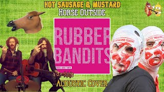 Rubberbandits spastic hawk live webcam