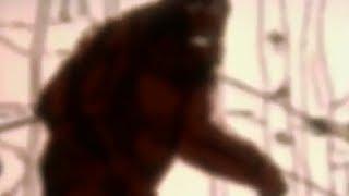 По следам снежного человека - документальный фильм