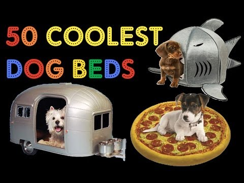 50 WORLD'S COOLEST DOG BEDS - a collection of crazy cool ...