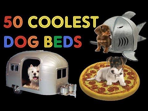 Shark Bed For Large Dog