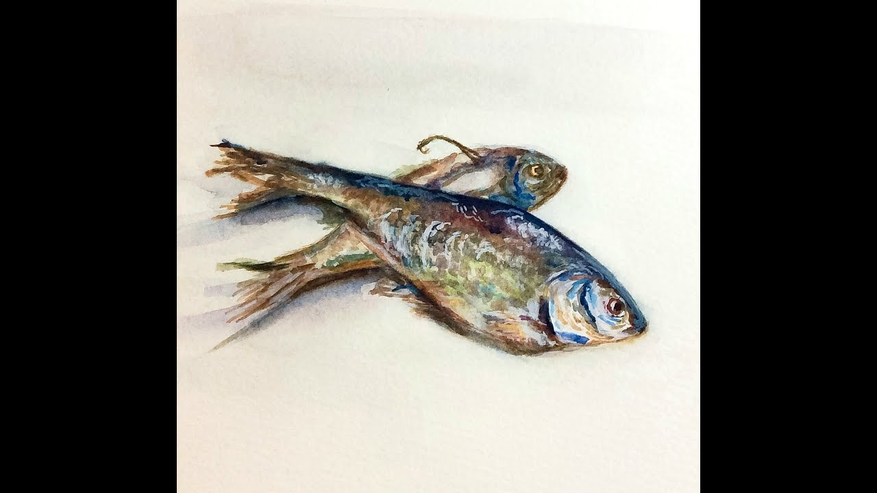 How to paint fish in watercolors stilllife painting for How to paint a fish
