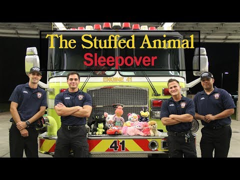 Hillsborough County Fire Rescue has some new stuffed recruits - Stuffed Animal Sleepover