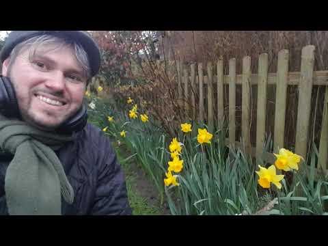 ASMR SoftTalk - NEW video uploading very soon - Visualise Wellness NOT fear  Gentle Male Voice