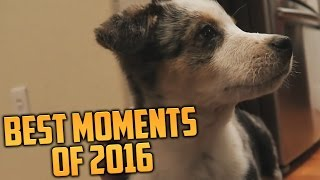 THE BEST MOMENTS OF 2016! (Ultimate Gaming Recap Montage)
