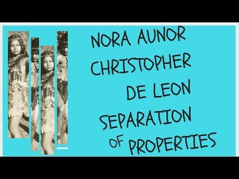 NORA AUNOR CHRISTOPHER DE LEON SEPARATION OF PROPERTIES