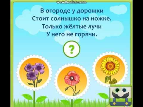 загадки про лето времена года ()