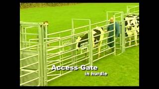 Iae Portable Handling Cattle Equipment