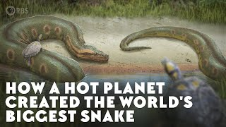 How a Hot Planet Created the World's Biggest Snake