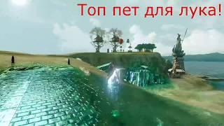 ArcheAge 3.5 Гравитация. Окохонор. Реклама ездового питомца для лука. (Следопыт. Ашьяра)