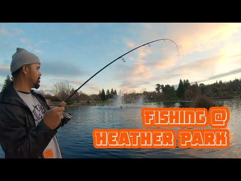 Catfish Fishing At Heather Farms Park, Walnut Creek California | ITGETSREEL Episode 41