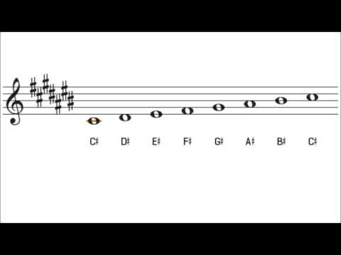 c sharp major scale and key signature   the key of c# major