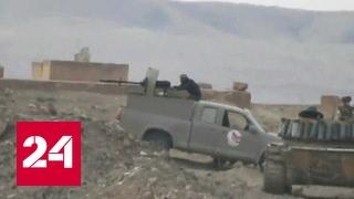 Удар по Сирии: Запад опять помог террористам
