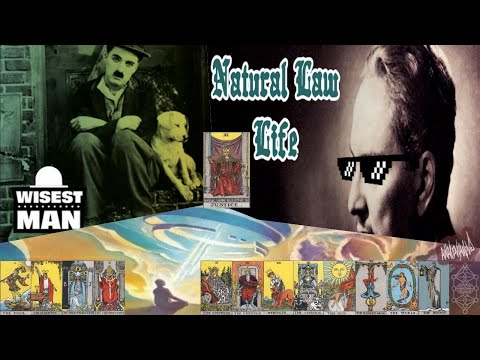 The Wisest Man Lives By Universal Law ((432Hz))