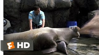 Vomiting Walrus - 50 First Dates (3/8) Movie CLIP (2004) HD