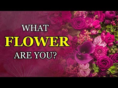 Which FLOWER Best Describes Your Personality?