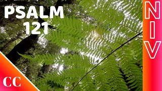 Psalm 121 - NIV - Bible Song - Psalms Songs - Scripture Worship