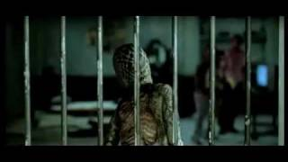 Hissss Movie Trailers   Hissss Movie Videos   Bollywood Movies   Yahoo! India Movies