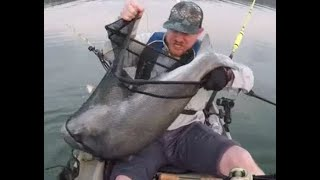 Monster Catfish bass Chaos Kerr lake 2019 Part 2 of 3