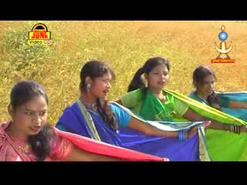 Baari Bhoole Bhanti Koya || Superhit Gondi Geet 2014