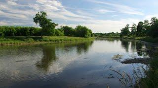 Grand River RIM Park Trail Summer, Waterloo Canada