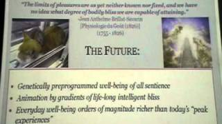 Towards the Abolition of Suffering - David Pearce [UKH+] (7/7)