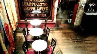 Gato Vino Live Music Stage Live Stream