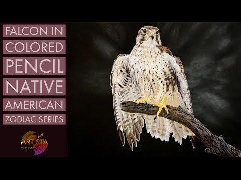 Realistic Falcon In Colored Pencil   Native American Zodiac