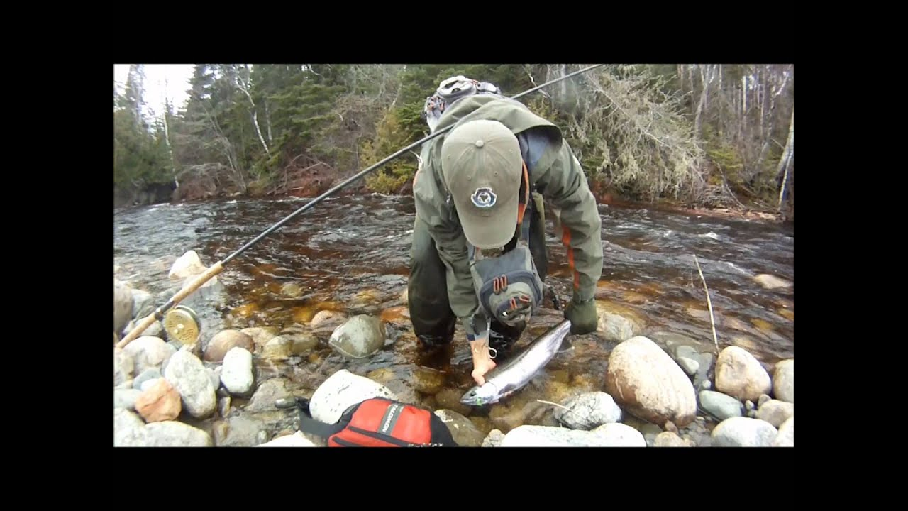 Steelhead fishing on the beautiful streams of the north for North shore fishing report