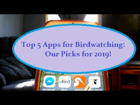 Top 5 Birding Apps: Our Picks For 2019