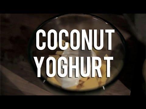The Raw Chef TV | Raw food recipe for coconut yoghurt