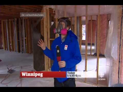 Mice Infest $1M Winnipeg House