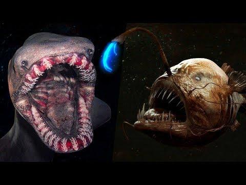 7 Criaturas Siniestras Que Viven En El Fondo Del Mar
