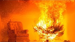 Avoid a Holiday Hazard: WPI Demonstrates Christmas Tree Safety with a Live Burn
