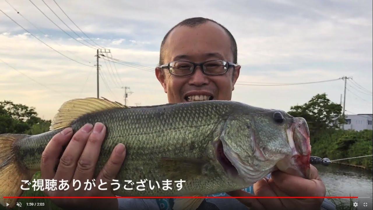 釣り 2020 バス 霞ヶ浦