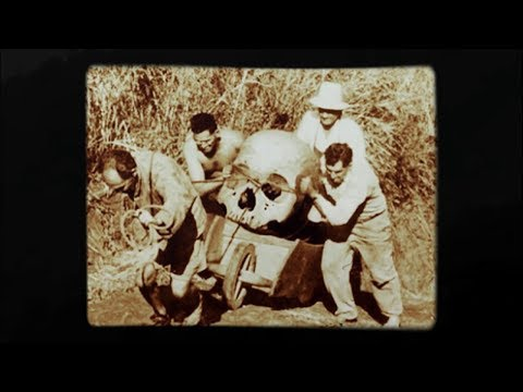 When The Giants Walked Throught  The Land Of  Laos, The Giant  Ancient Urns Vessels
