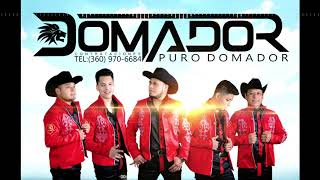free mp3 songs download - Puro domador mp3 - Free youtube