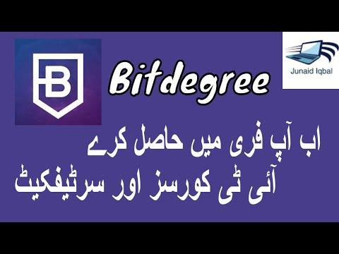 BitDegree crypto review