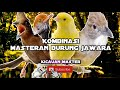 Kombinasi Masteran Burung Juara Jernih(.mp3 .mp4) Mp3 - Mp4 Download