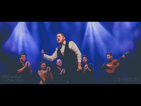 MI VERDAD - The new flamenco show of Esteban Murillo