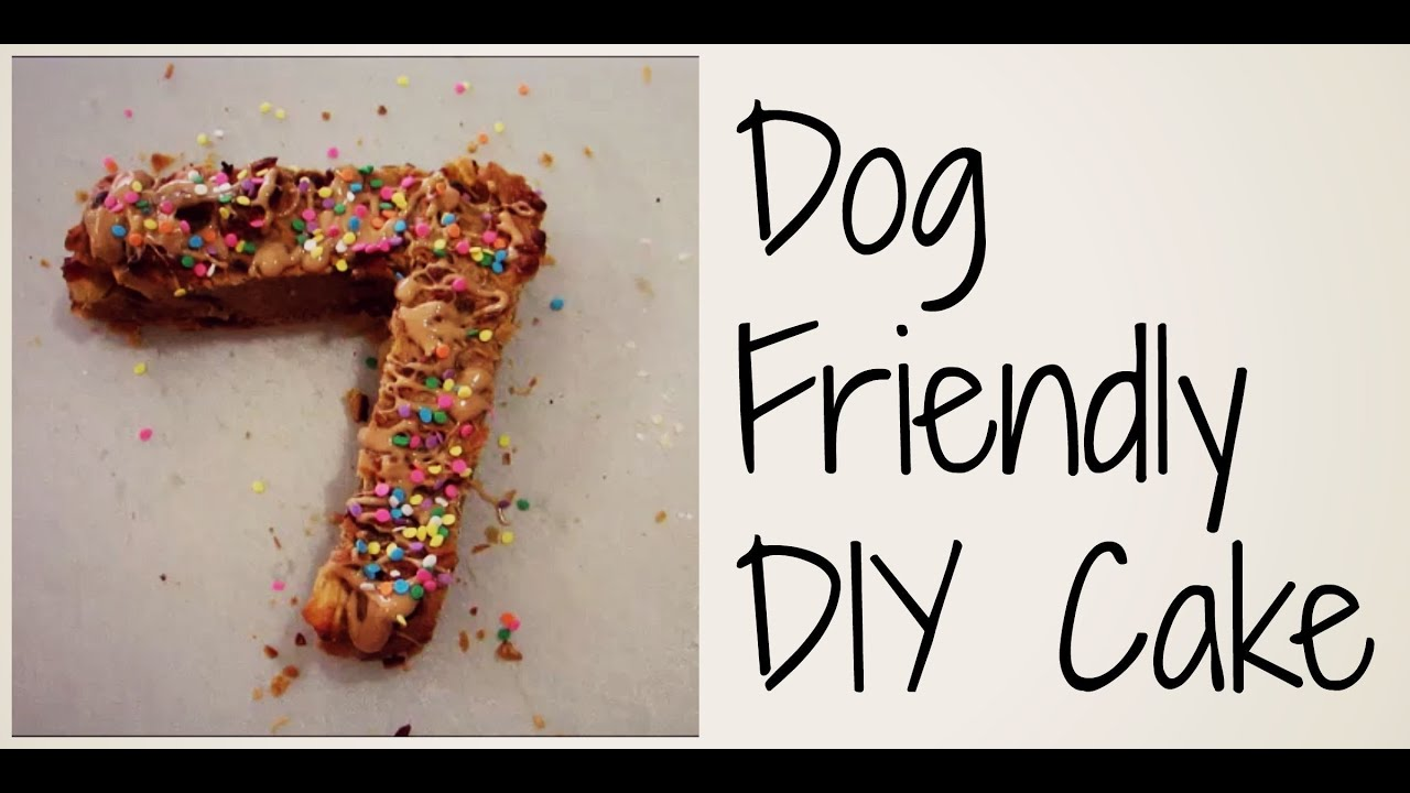 Diy Dog Friendly Birthday Cake Zac Lucys Birthday Youtube